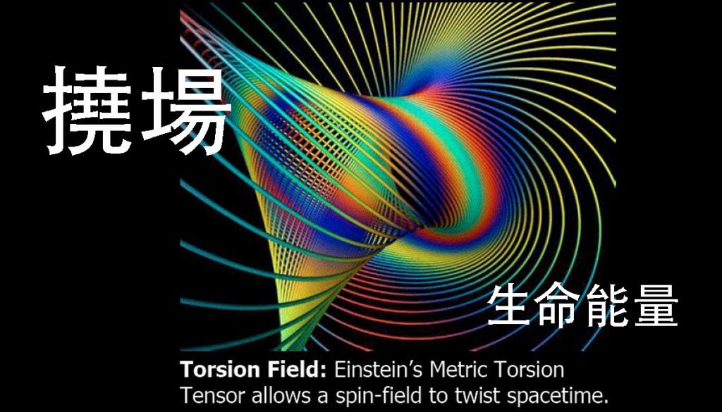 撓場 Torsion field